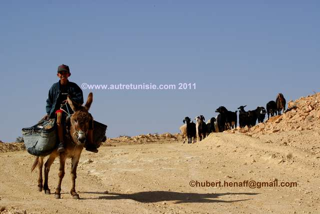 On the Berber Tracks