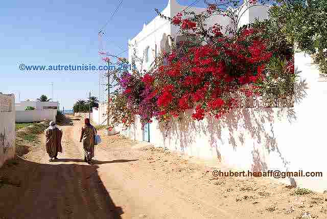 Djerba by Tracks Ride – 1 day