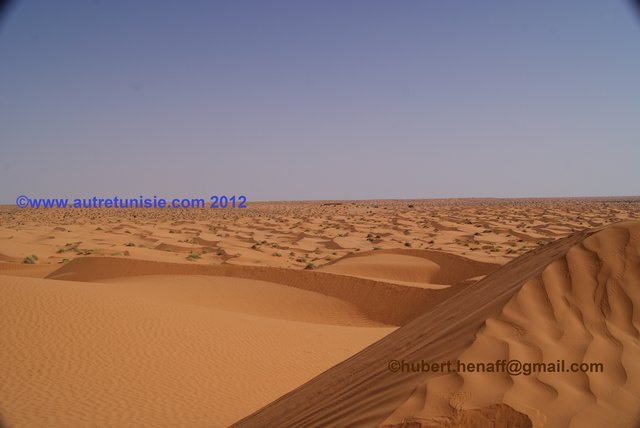 Tozeur, the Sahara, Trek Without Pain