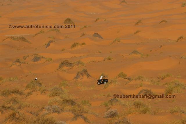Circuit Sahara – Du Désert de Pierres au Désert de Sable
