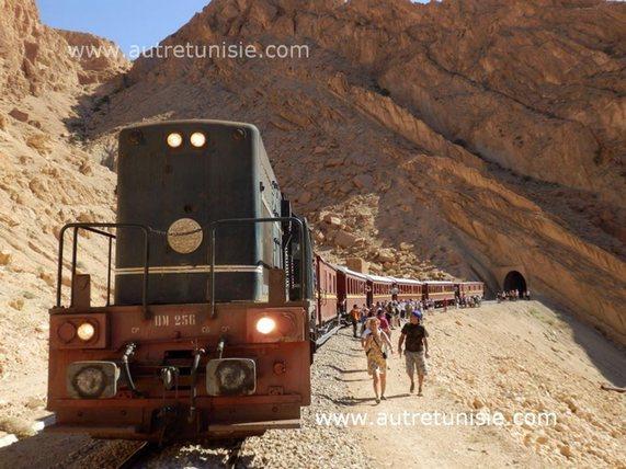 De l'île de Djerba aux Oasis de Montagne