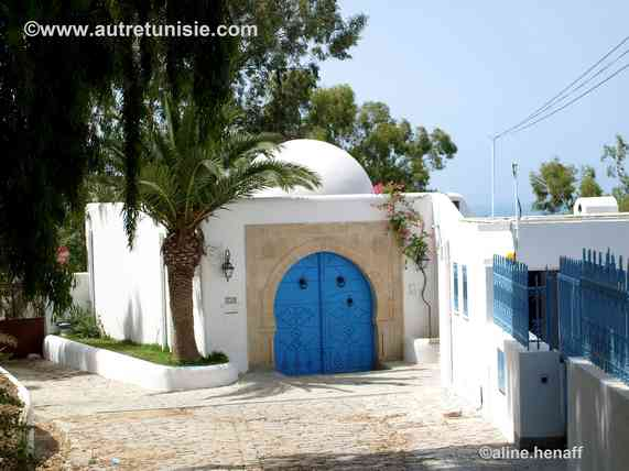 Excursion Carthage et Sidi Bou Said – 1/2 j
