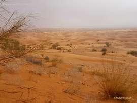 Excursion Oasis de montagne et trek dans le Sahara Tunisien – Octobre 2017