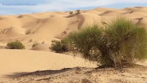 Randonnée désert Sahara Tunisie – Novembre 2017