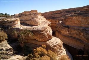 Un canyon creusé par l'érosion hydrique, en bordure d'une oasis de montagne
