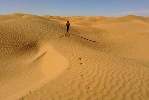 Randonnée initiatique en pays bédouin